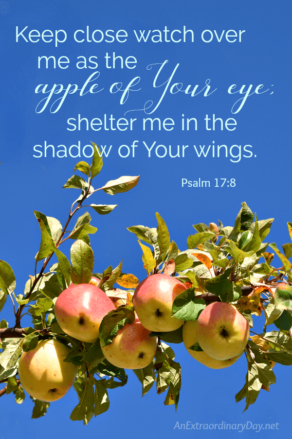 Comforting and Inspirational Bible Verse for Hard Times - Keep close watch over me at the apple of Your eye;