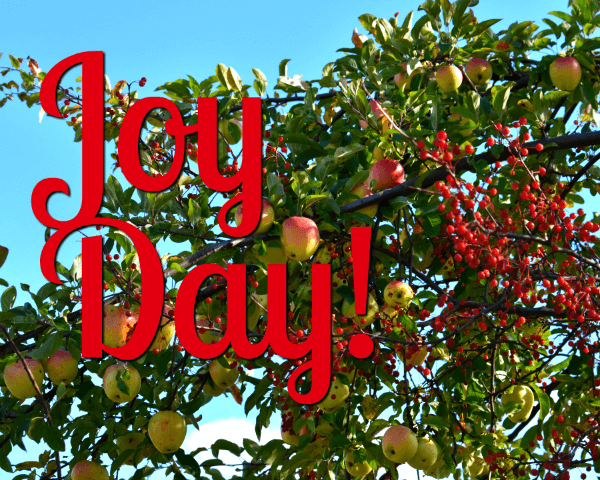 apples - JoyDay! -