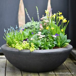 "Two ""Green"" Thumbs Up for Small Space Container Gardening"